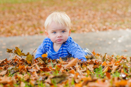 Baby peeping out of leaves for Autumn photos in Sheffield