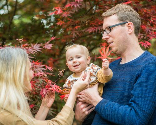 Family in Autumn leaves - Cumbria photographers