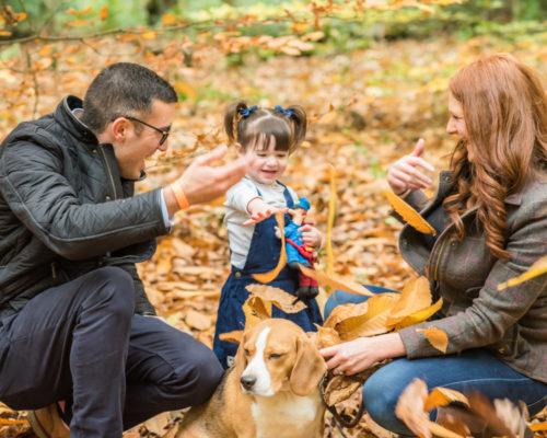 Leaf throwing family, Keswick dog photographers