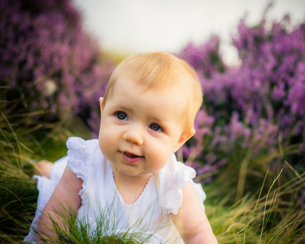 baby Liliana in heather at Padley Gorge, baby photographer Lake District